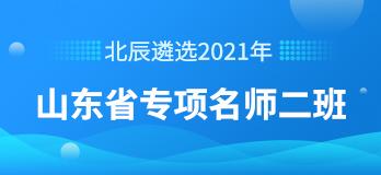 2021年山东省专项名师二班